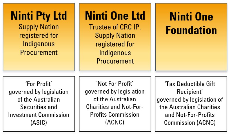 Ninti One company structure